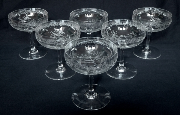 Coupe à champagne en cristal de Baccarat, modèle Mimosas